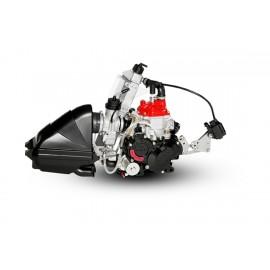 MOTOR ROTAX MINI EVO 2017
