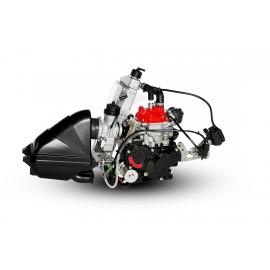 MOTOR ROTAX MAX EVO 2017