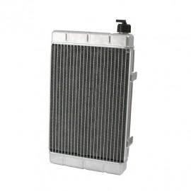 RADIADOR ALUMINIO 435x260x43mm 1.270 ml